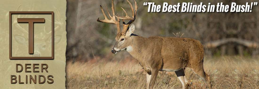 Tbox Deer Blinds logo and picture header